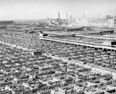Union Stockyards, Chicago, IL